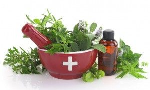Medicinal Herbs - low res